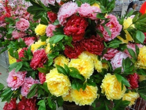 Peonies look beautiful all the same though the fresh ones would sure titillate the senses.